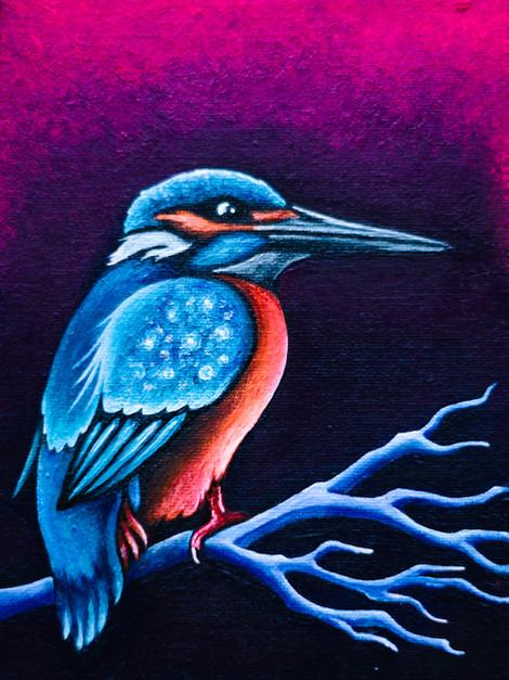 Reclining Kingfisher
