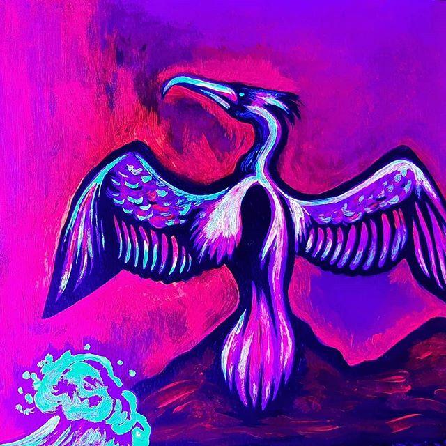 UV Cormorant