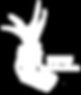 Logo DATUM blancos2.png