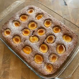 Schokolade-Marillenkuchen