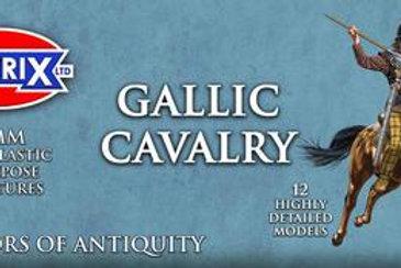 VICTRIX - 28mm Ancient Gallic Cavalry