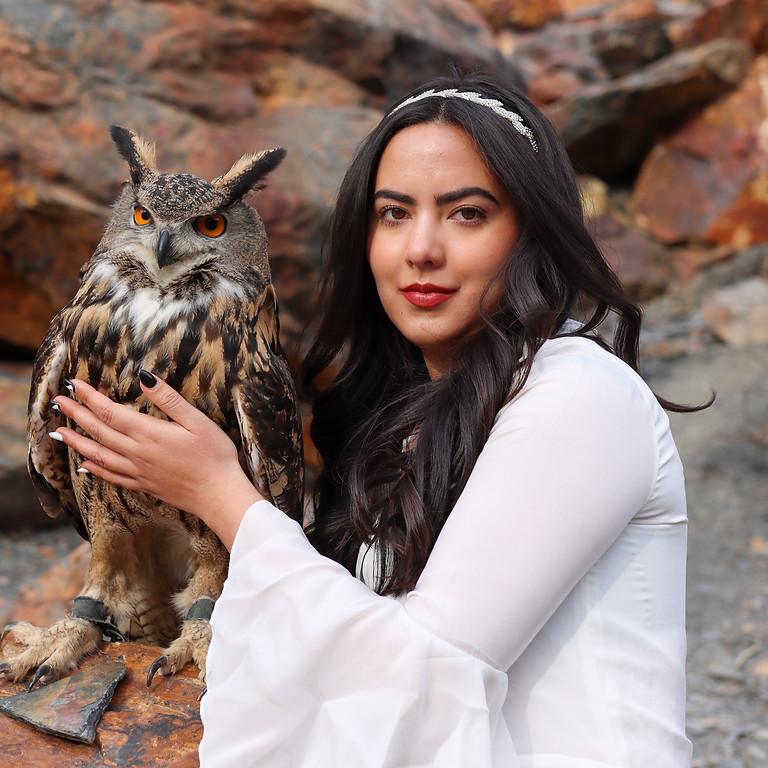 Eurasian Eagle Owl Photo Event