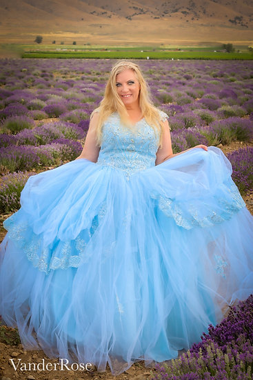 The Glass Slipper Gown