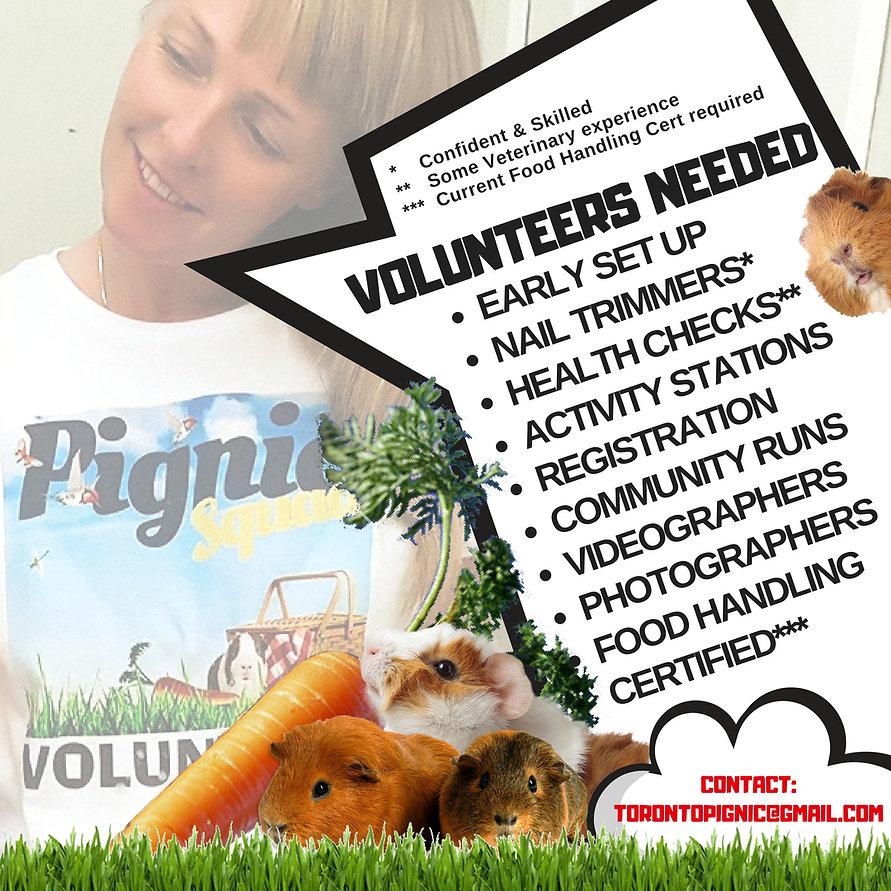 Volunteer POST 2018.jpg