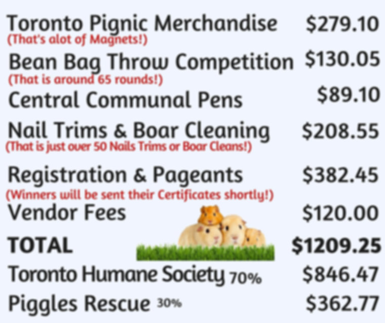 Toronto Pignic Funds Raised Toronto Humane Society Piggles Rescue