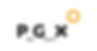 Prografix logo.png