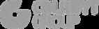 logo colruytgroup copy.png