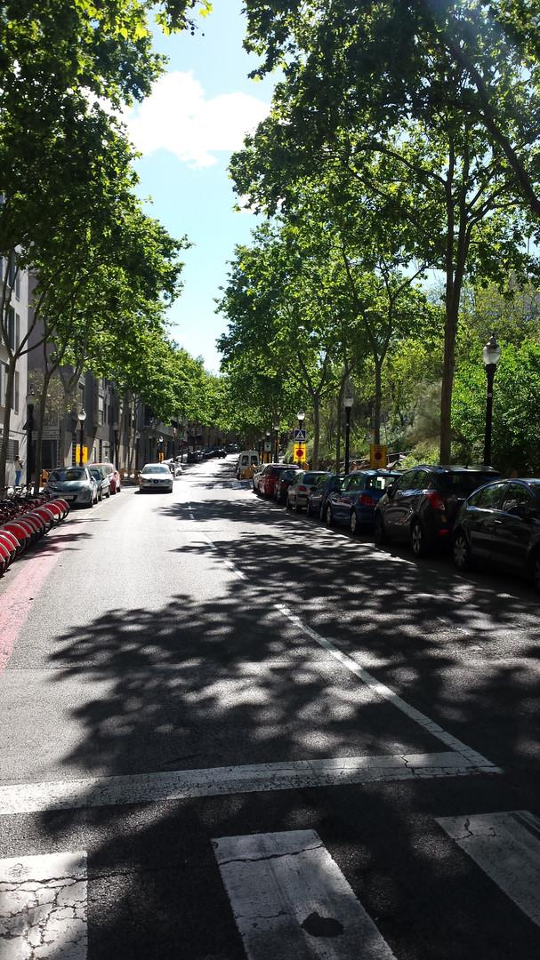 Passeig_Exposicio.jpg