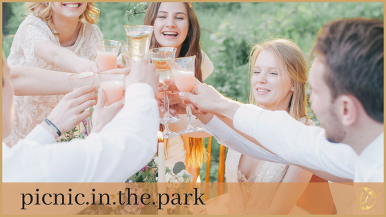Picnic in the Park Theme