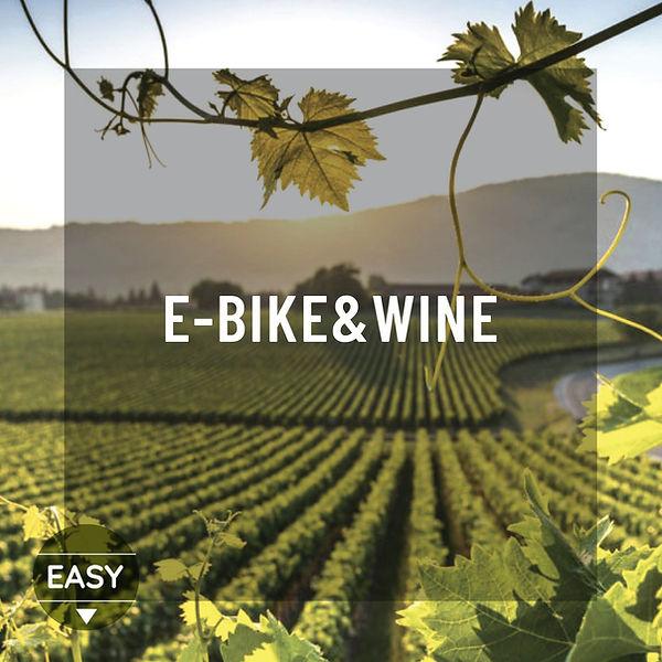 e-bike e wine.jpeg