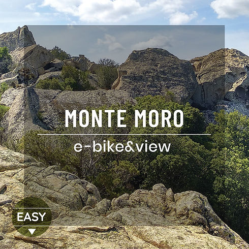 e-bikes e view.jpeg