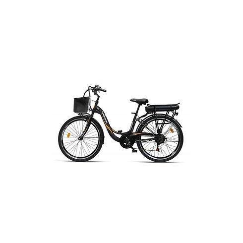 bici elettrica.jpg
