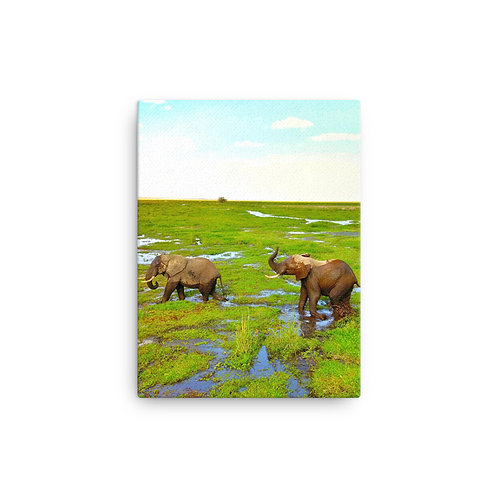 Amboseli Park, Kenya | Canvas