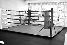 boxing gym gymea