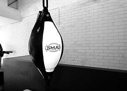 boxing sutherland shire