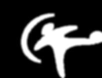 copa floripa logo - Final.png