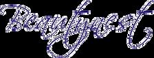 Logo Beautynest Herent
