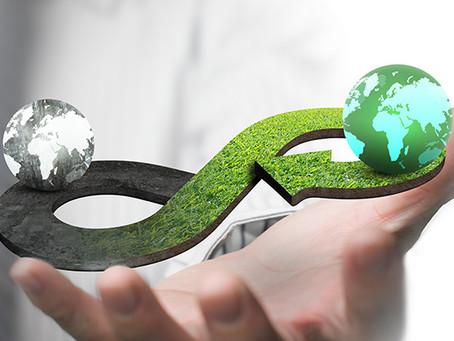 Economia Circular: Empreendedorismo e Inovação