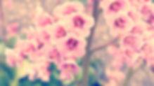 untitled_by_mouseleaf-d8n1jk1.jpg