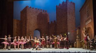 Dansomanie sur Don Quichotte