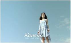 Kanebo freeplus