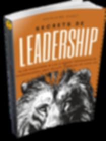 secrets de leadership.png