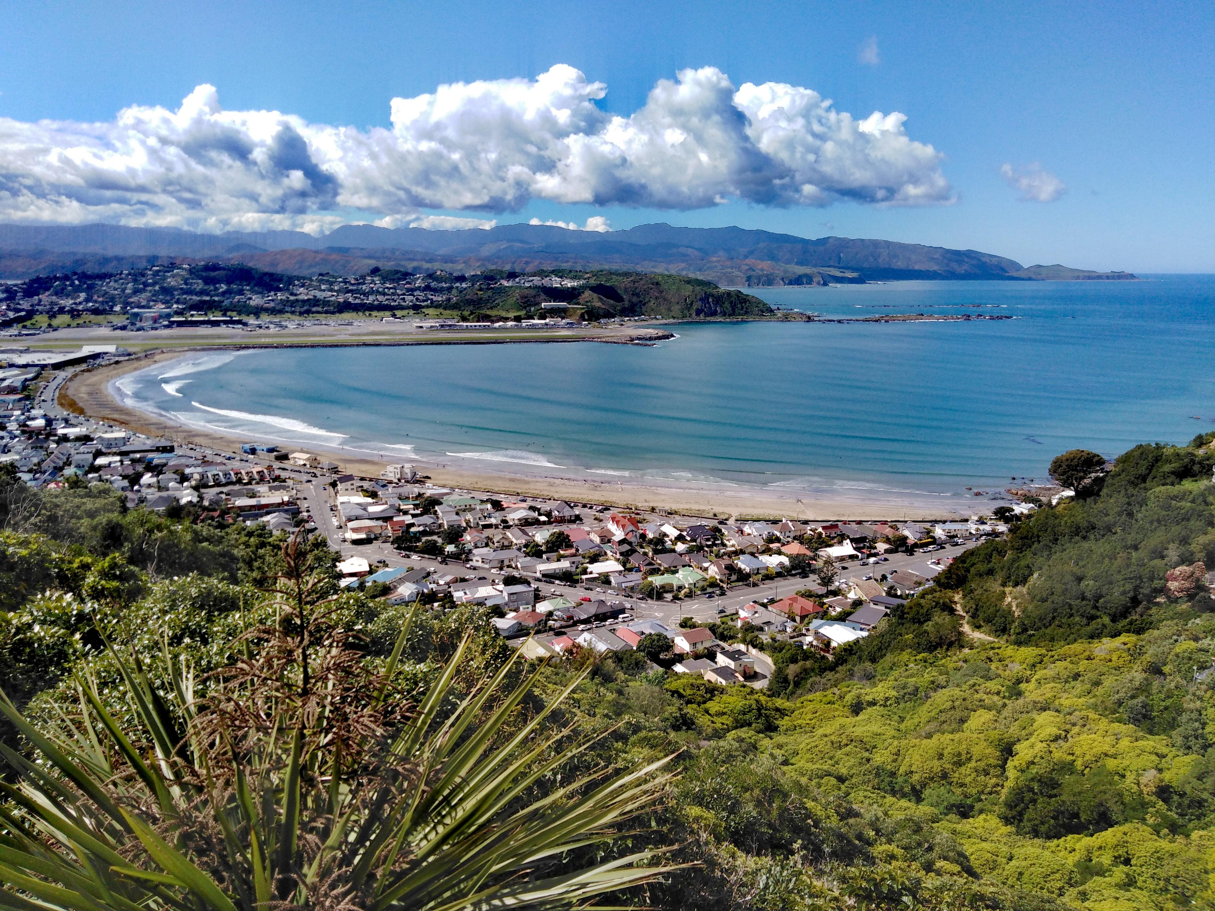 Airbnb Wellington