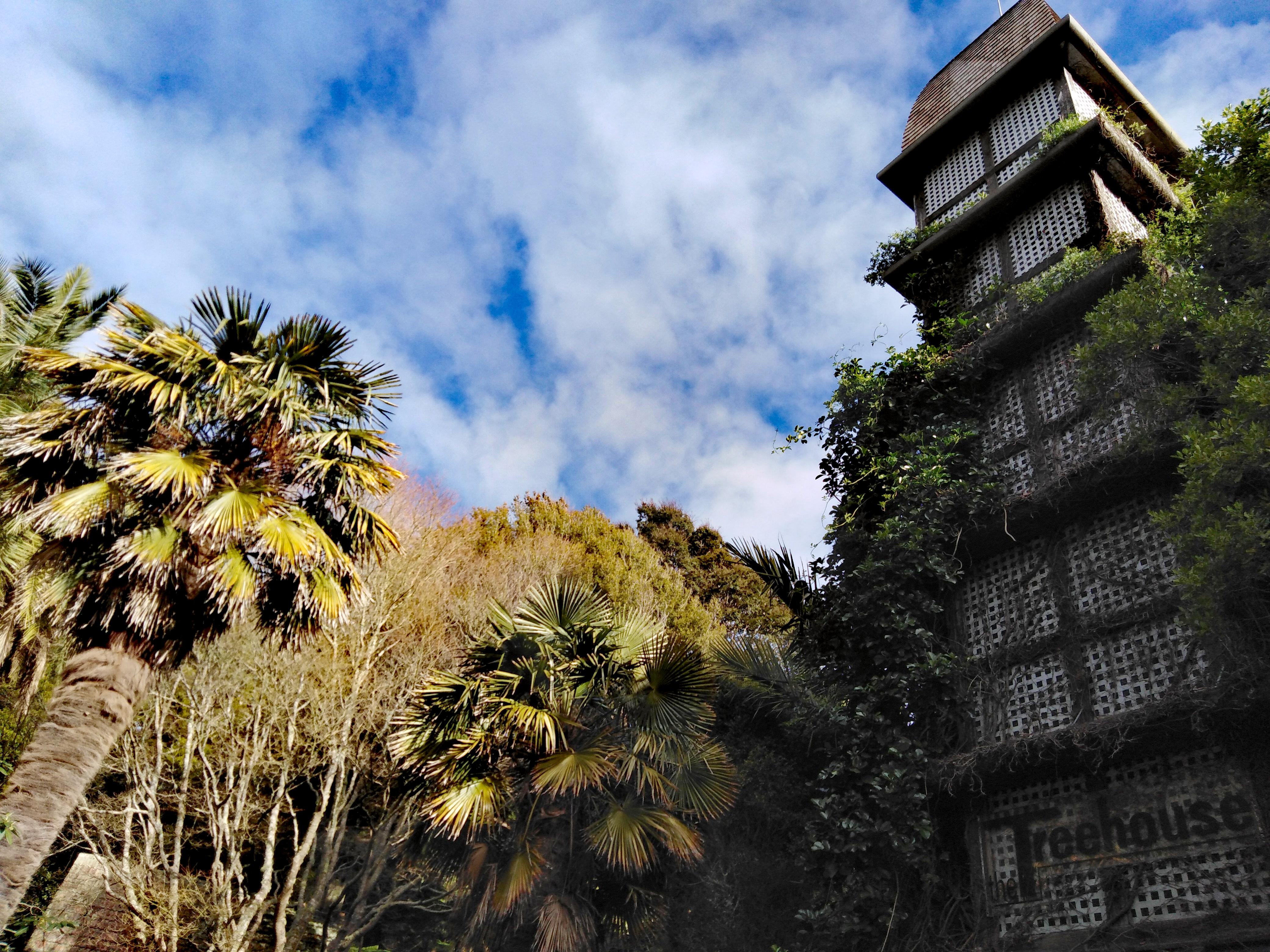 Botanic Garden - Wellington