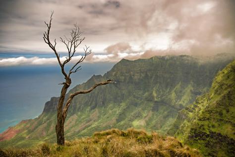 Cliff Na Pa Li Coast