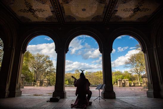 Guitarrist, Central Park