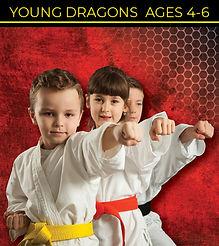 NEW Young Dragon 1.jpg