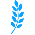 wheat-icon-png-19.png