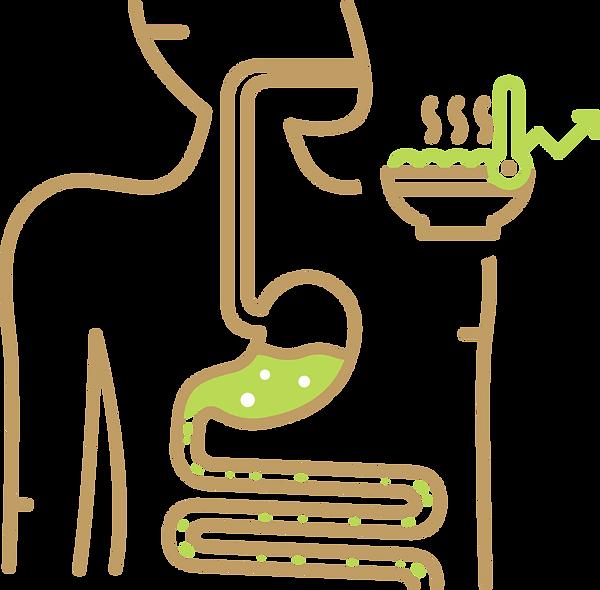 stomach-intestine-001-imagilin-pa5051-pr