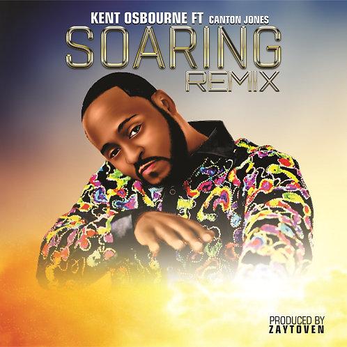 Soaring (Remix)