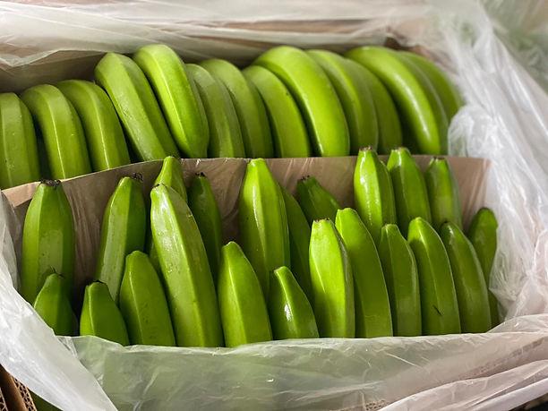 Caja de banano de exportación