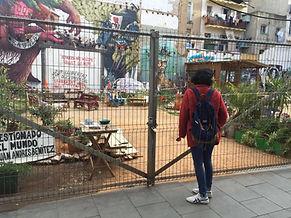 אמנות רחוב בשכונת אל-רוואל