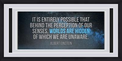 Albert Einstein 4.png