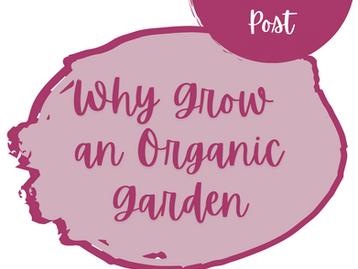 Why Grow an Organic Garden