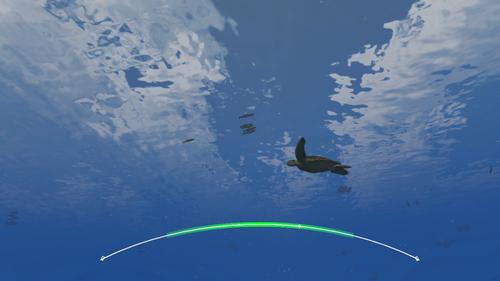Green Sea Turtle in water column