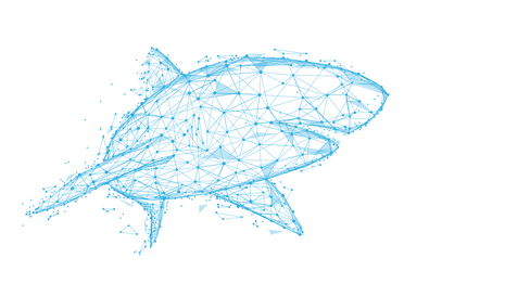 shark_vector_edited.png