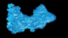 fish_vector_edited.png