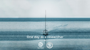 Collaboration with DMAD Marine Mammals Research Association