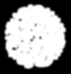 Logo_ver_1b_top_whitev2.png