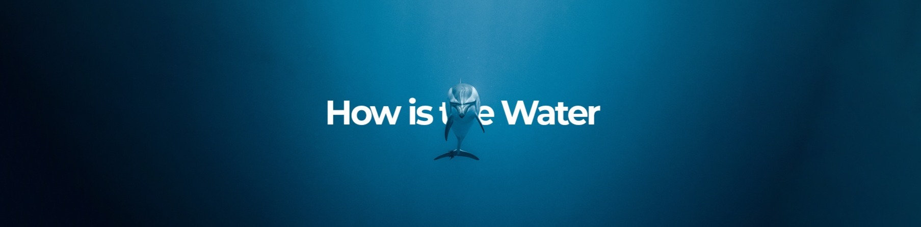 Howisthewater_banner_1920x640_new_edited