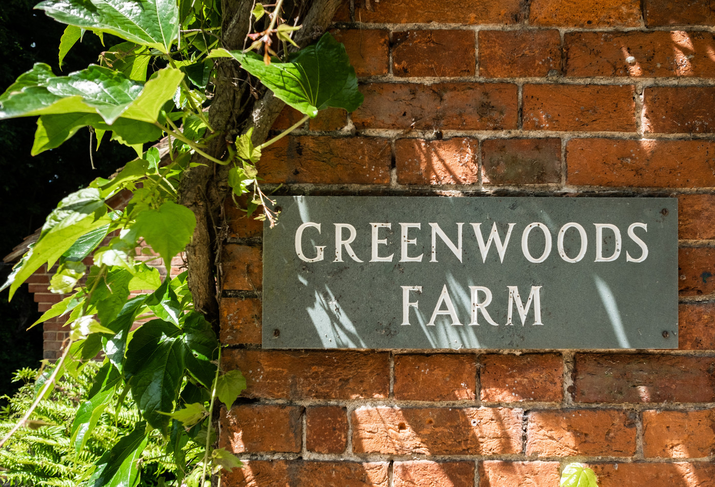 All images © Greenwood Granary