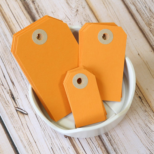 pumpkin orange colour luggage tags