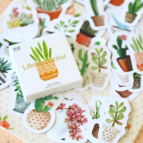cactus succulents lifelog cartoon shapes stickers