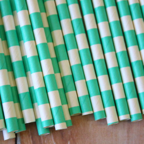 light aqua circle stripe paper straws