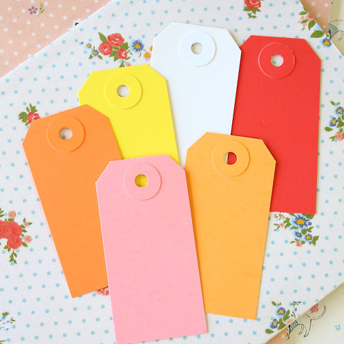 wg small colour luggage gift tags