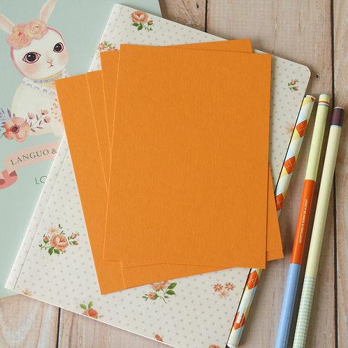 pumpkin orange eco postcard blanks